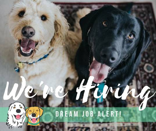 JOIN OUR PACK! Rochester Dog Walkers is hiring! (Webster, Pittsford, Brighton, Spencerport)